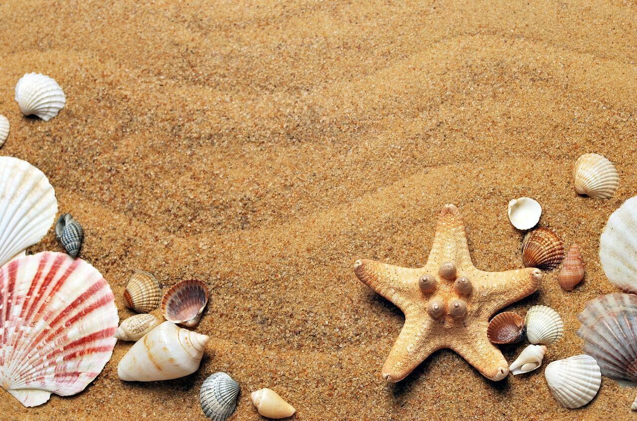 odszkodowania na wakacjach